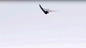 Aleix Sanllehy in the air