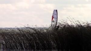 Lake Ontario freestyle